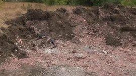 Под Донецком обнаружили еще одно захоронение