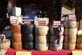 Лужков займется производством сыра
