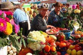 Сельские кооперативы - единственная альтернатива торговым сетям