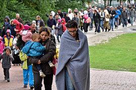 Европа депортирует сотни тысяч экономических мигрантов