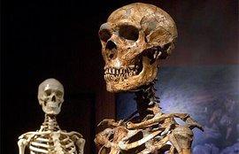 Ученые выяснили, как протеины могут раскрыть точное время смерти человека