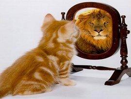 #психоанализ #самооценка #самовосприятие