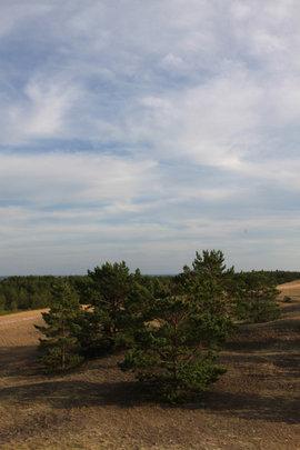 остров Тютерс, Финский залив