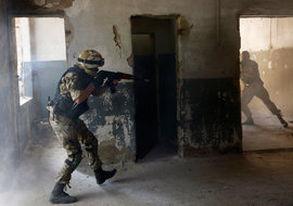 армия, Украина
