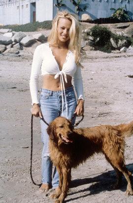 Памела Андерсон, собака