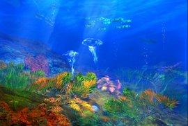 подводный мир, экспедиция
