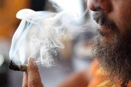 Употребление марихуаны воздействует на мозг, вызывая шизофрению